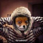 Foxaddict