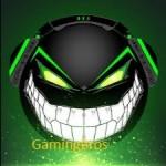 Gamer Bros