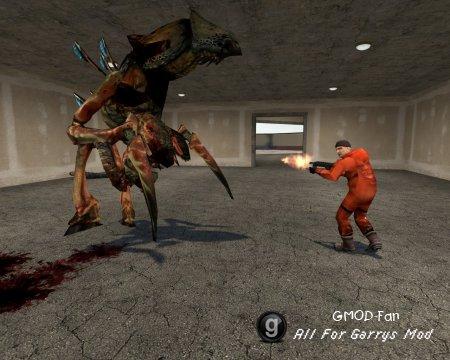 Half-life 2 Beta Pack 1.2