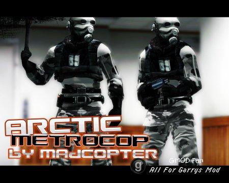 Arctic Metropolice Skin