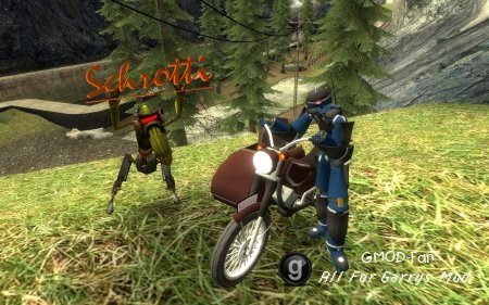 SligWolf´s Motorbike(Schrotti)