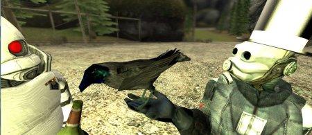 Drunk Crow