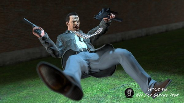 Max Payne Pack