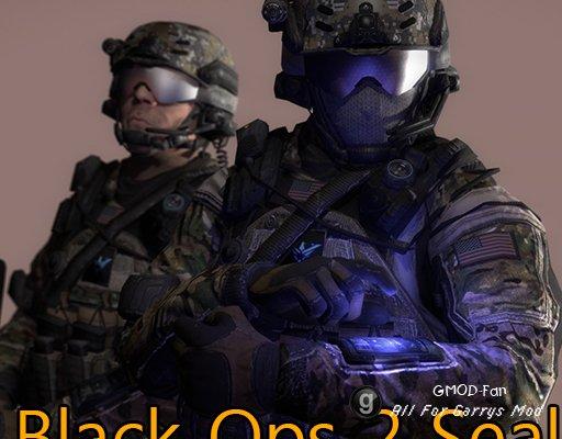 Black Ops 2 Seal