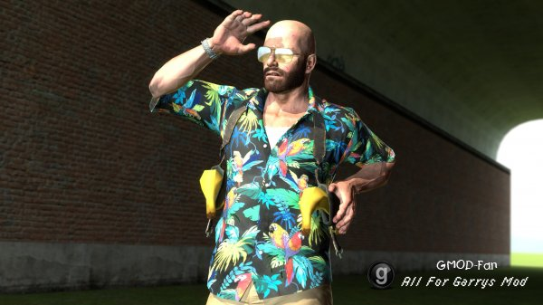 'Tropical' & 'Down to Business' Max Payne Ragdolls