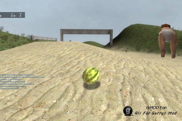 melonracer