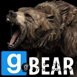 Bear SNPC