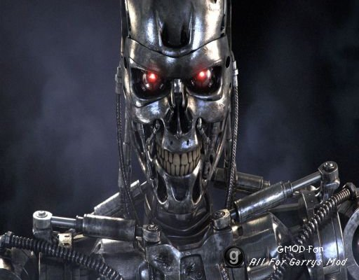 Terminator ragdolls
