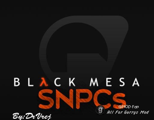 Black Mesa SNPCs