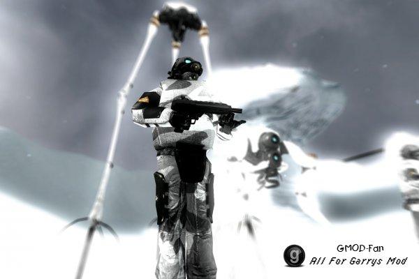 Arctic Combine Soldiers