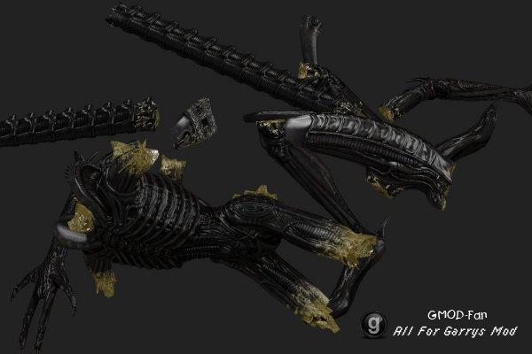 AvP 2010 Alien Limb models