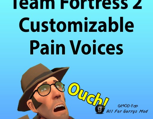 Team Fortress 2 Customizable Pain/Death Voices
