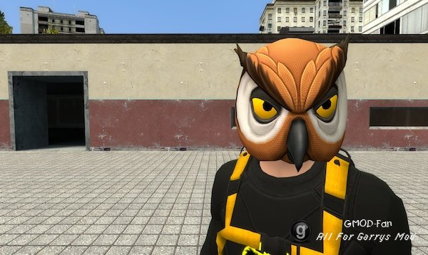 Bat Owl Player Model