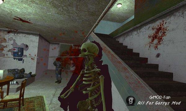 X-Ray Killcam