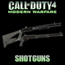 Call of Duty 4: Modern Warfare Shotguns