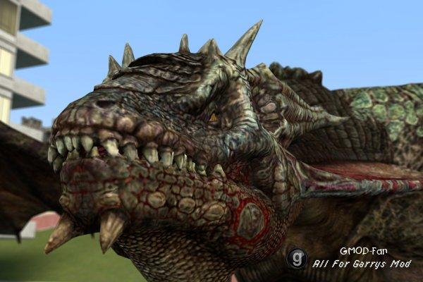 Saskia Dragon