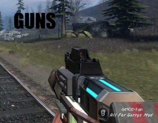 Custom-Citizens Guns